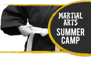 karate camp banner
