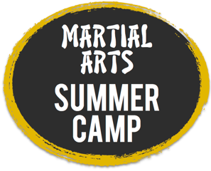 karate camp logo